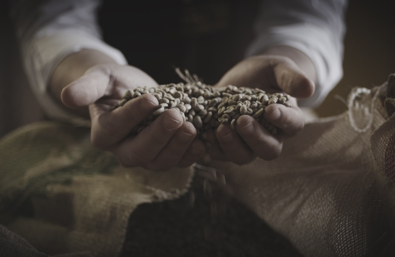 Two hands scooping Vittoria Coffee beans from a hessian sack