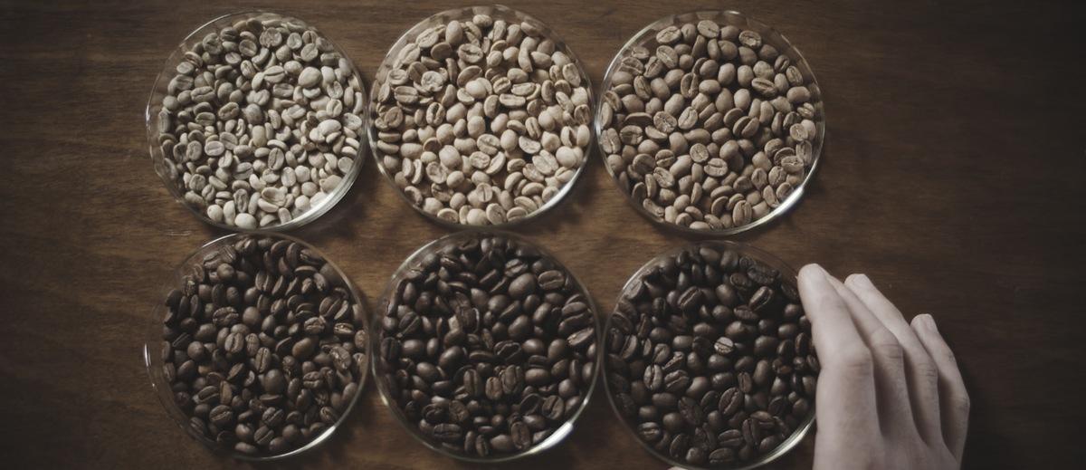 Six round dishes containing white and dark Vittoria Coffee beans